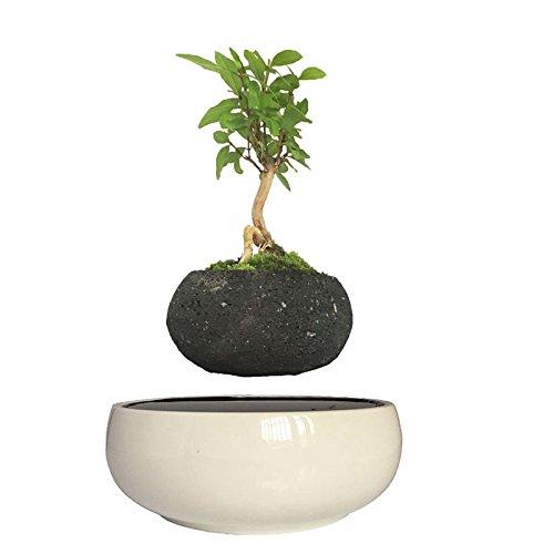 High Tech Gadgets Magnetic Levitation Air Bonsai Ceramic Garden Pots Plant Birthday Gifts