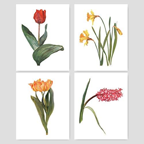 Botanical Prints Wall Art - Springtime Flowers, Arlette Davids - (Set of 4) - Unframed ()