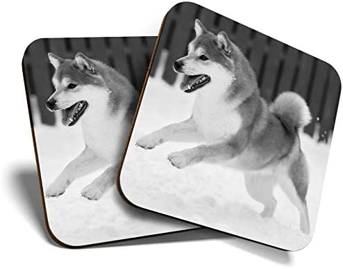 Great Coasters (juego de 2) cuadrado BW – Shiba Inu Akita perro cachorro/mascota de calidad brillante/protección de mesa para cualquier tipo de mesa #35540: Amazon.es: Hogar