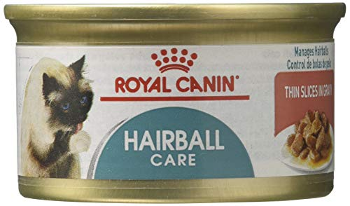 Royal Canin Feline Care Nutrition Hairball Canned Canned Cat Food, 3 oz (Pack of 24)