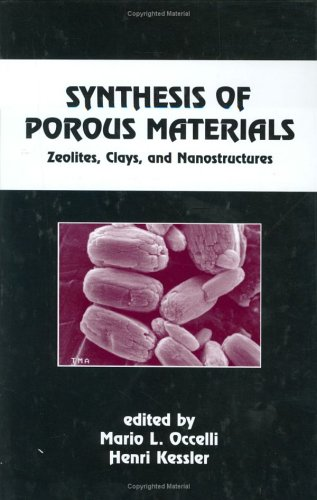 Synthesis of Porous Materials: Zeolites: Clays, and Nanostructures (Chemical Industries)