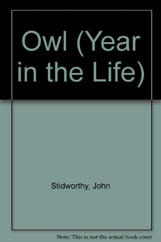 Owl (Year in the Life)