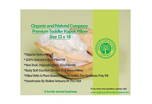 Organic and Natural Toddler Kapok Pillow with Organic Shell