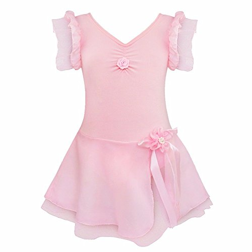 FEESHOW Girls' Gymnastic Ballet Leotard Dance Dress Tutu Skirt Princess Costume Pink 5-6 (Pink Dance Costume)
