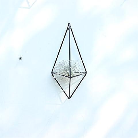 Rustic Wall Mount Hanging Triangular Geometric Metal Tillandsia Air Plants Holder Rack Black Wall Accent Decor (Hexagon Wall Planter)