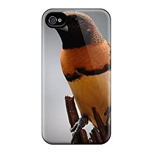Case Cover For Ipod Touch 5 Hard Case With Fashion Design/ AVu4435sERe Phone Case