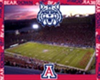 """Arizona 500 Piece Jigsaw Puzzle 16""""x20 Size Football Stadium 419ERbjwLyL"""