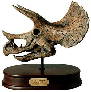 Amazon Model Triceratops Skull Toys Amp Games