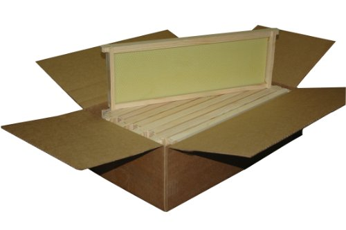 Unassembled Frame - Mann Lake WW926 10-Pack Assembled Commercial Frames with Waxed Natural Rite-Cell Foundation, 6-1/4-Inch