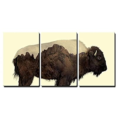 Buffalo and Rocky Mountains Wall Decor x3 Panels...