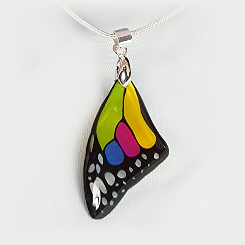 Transparent Glass Like Butterfly Wing Necklace product image