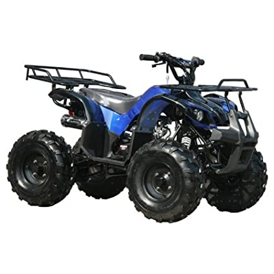 SMART DEALSNOW brings Brand new TAO TAO TFORCE Mid Size Fully Automatic ATV Four Wheeler with REVERSE, BIGGER TIRES and WIDER Suspension : Sports & Outdoors