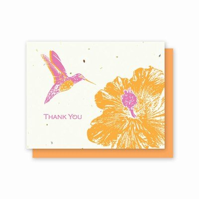 Grow-a-Note Plantable Wildflowers Greeting Cards, Thank You Hummingbird Hibiscus, Package of 5 ()
