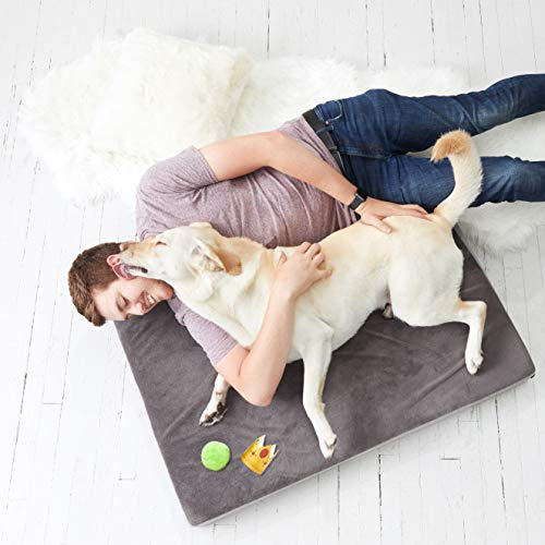 (BarkBox X-Large Jumbo 4 Inch Tall Gray Ultra Plush Orthopedic Memory Foam Dog Bed or Crate/Kennel Mat - Removable Washable Cover - Free Surprise)