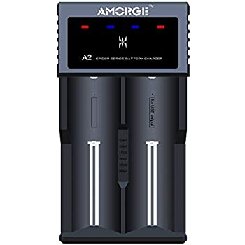 Amazon.com: ThinkTop Intelligent USB 18650 Battery Charger ...