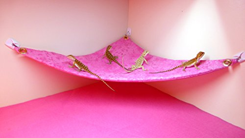 Hammock for Bearded Dragons, Pink Sparkles fabric with suction cup hooks by Carolina Designer Dragons