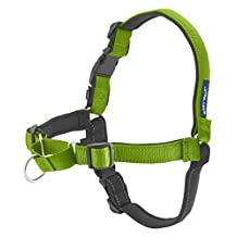 PetSafe EWH-D-HC-L-APL Deluxe Easy Walk Harness, Large, Apple Green