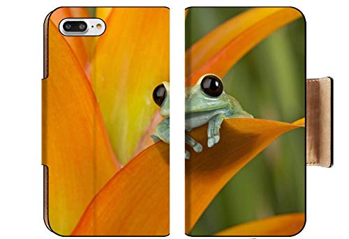(Luxlady Premium Apple iPhone 8 Plus Flip Pu Wallet Case Image ID: 25104618 A Perch with a View Maroon Eyed Tree Frog Peers from Orange bromeliad)