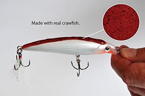 Liquid mayhem walleye garlic minnow 2 oz tube fishing for Best fish bait