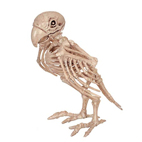 Fly Halloween Decorations, Haunted Houses, Parrots, Skeletons, Skeletons, Horror Bars, Movies and TV Props. Halloween Supplies -