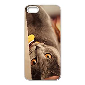 The Cat Hight Quality Plastic Case for Iphone 5s
