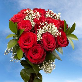 GlobalRose 3 Dozen Fresh Cut Red Color Roses - Fresh Flowers Express Delivery - Perfect Gift for Any Ocassion