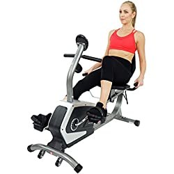 Sunny Health & Fitness Magnetic Recumbent Bike Exercise Bike, 300lb Capacity, Easy Adjustable Seat, Monitor, Pulse Rate Monitoring - SF-RB4616