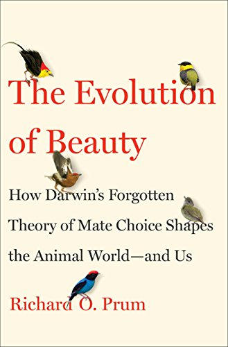 The Evolution of Beauty: How Darwin's Forgotten Theory of Mate Choice Shapes the Animal World - and Us (Peacock Feathers Displaying)