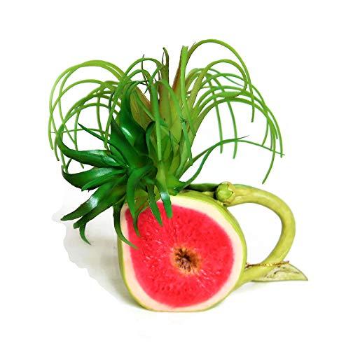 fruit design teapot - 8
