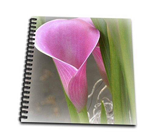 3dRose db_37518_2 Perfectly Pink Calla Lily Flowers Floral Photography Memory Book, 12 by 12-Inch Calla Lily Lily Photo Album
