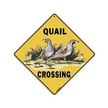 "CROSSWALKS Quail Crossing 12"" X 12"" Aluminum Sign"