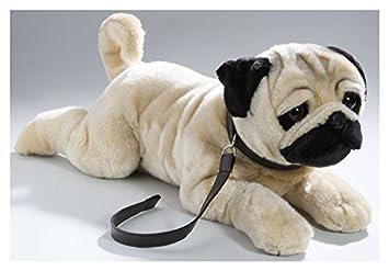 Pañales para perros pug