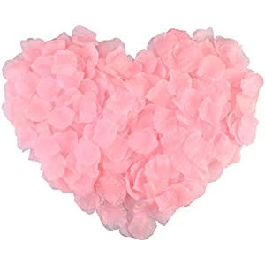 obmwang 3000Pcs Pink Silk Rose Petals Wedding Flower Decoration Artificial Red Rose Flower Petals for Wedding Party Favors Decoration and Vase Home Decor Wedding Bridal Decoration(3000pcs Pink) 105