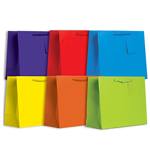 Jillson Roberts 6-Count Large All-Occasion Solid Color Gift Bags Available in 4 Different Assortments, Bold and Bright