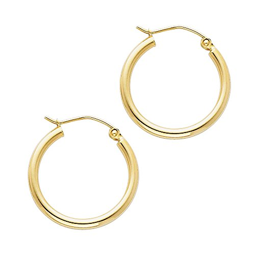 14k Yellow Gold 2mm Thickness Hinged Hoop Earrings (20 x 20 ()