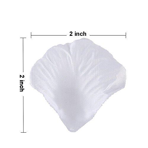 Review BESKIT 3000 Pieces Silk