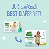 Seventh Generation Baby Diapers, Size 1, 31 Count