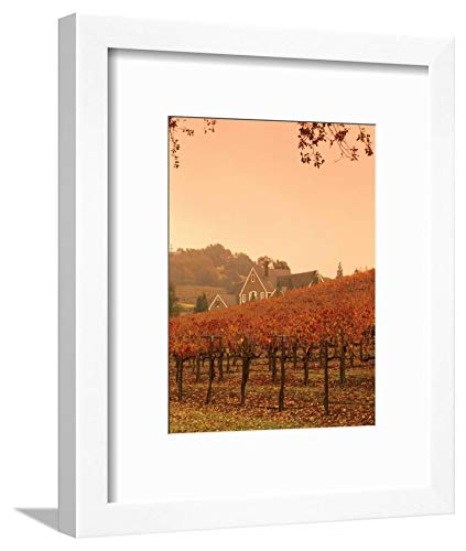 ArtEdge Silver Oak Cellars Winery and Vineyard, Alexander Valley, Mendocino County, California, USA by John Alves, White Matted Wall Art Framed Print, 12x9 -