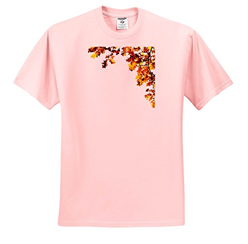 Price comparison product image 3dRose Alexis Design - Floral - Decorative Frame Of Shining Brown Oak Leaves, Space For Custom Text - T-Shirts - Youth Light-Pink-T-Shirt Large(14-16) (TS_272217_46)