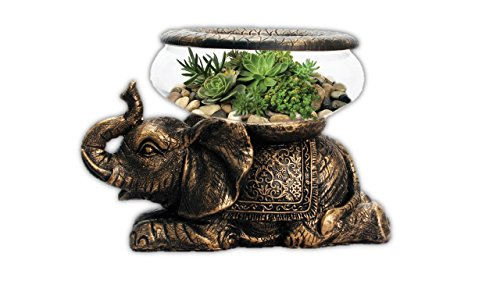 Figurines Glass Candle Holder (New Good Luck Decorative Gold Antiqued Elephant Glass Fish Bowl Tabletop Aquarium or Terrarium or Candle Holder with Color Gift Box)