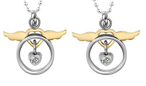 Old Lady Missing Dog Costume (Daesar Hers & Hers Necklace Set Stainless Steel Hollow Circle Dove & Wing Heart Pendant)