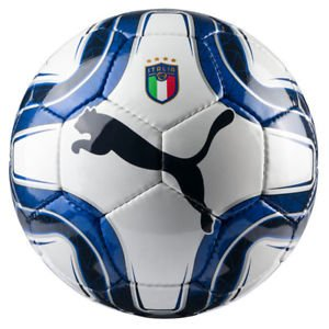 World Italy Cup Champions - PUMA World Cup Soccer Italy Licensed AccessoriesOfficial License Supplier of Replica and On-Pitch Merch, Team Power Blue-Peacoat, 5