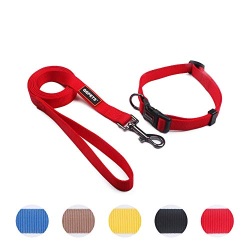 QQPETS Puppy Collar and Leash Set Nylon leashes with Collars for Small Dogs Daily Training Walking, Adjustable Collar Buckle and Leash with Padded Handle (S, red) (Nylon Collar Puppy Dog)