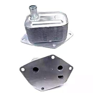 Meat & Doria 95056 - Radiador de aceite: Amazon.es: Coche y moto