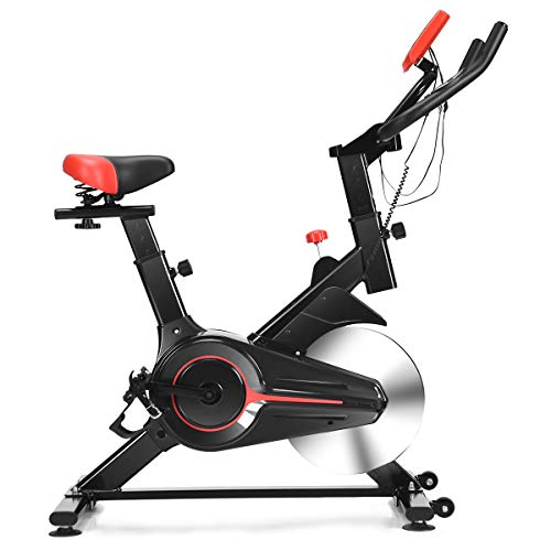 Goplus Stationary Bicycle, Indoor Cycling Bike, with Heart Rate Sensors, LCD Display, Professional Exercise Bike for Home and Gym Use (Standard) ()