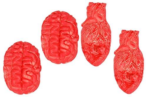 (Set of 4 Imitation Bloody Organs! Brain & Heart - A Halloween Must Have! Great Prop for)