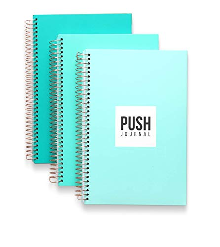 A 90-day, Undated, All-In-One Life Planner/Goal Setter/Notebook/Organizer/Scheduler/Journal Book, 3 Colors/Pack, Each Journal: 160 Pages-Quality Paper, 0.9 Lbs, 7x9 - Fits Into Your Bag ()