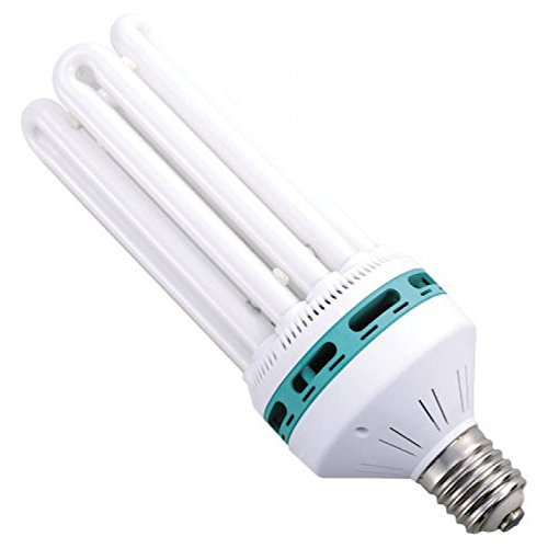 (Feliz Red Fluorescent 125 Watt 2700K (20/Cs))