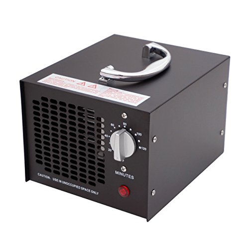 🥇 ECO-WORTHY 3.5 G 220 V Generador De Ozono Industriales – Purificador De Aire Ozono Purificador De Aire