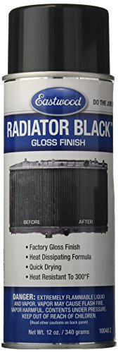 Eastwood 10040Z Black Radiator Paint (Radiator Black Paint Gloss 12oz Aerosol), (Paint For Radiator compare prices)